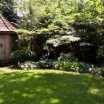george's backyard 2